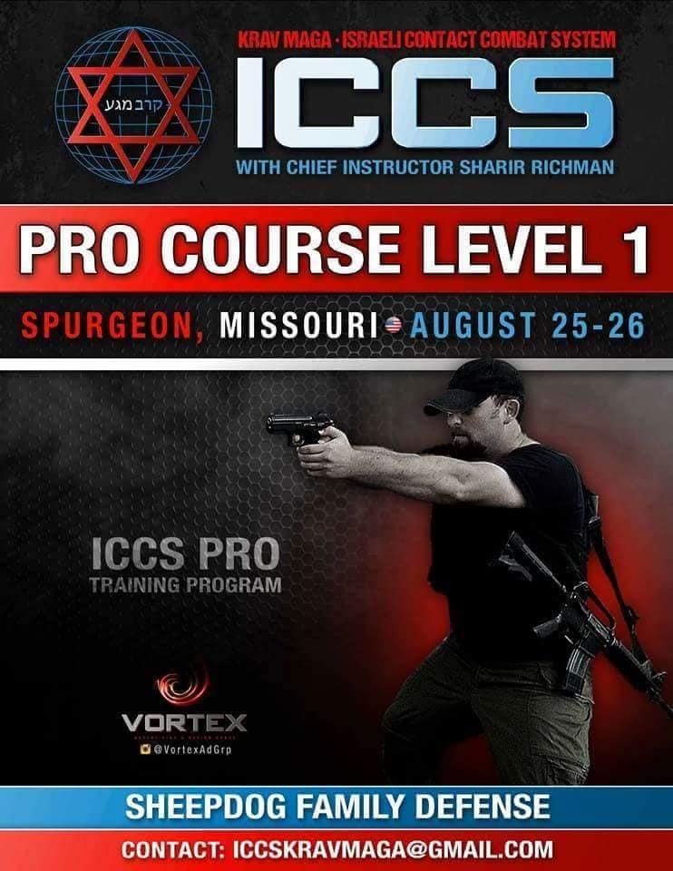 Stage iccs usa missouri 082018 - Stage Krav Maga ICCS – USA Missouri – Aout 2019
