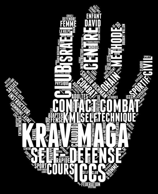 ICCS hand3 - 2 stages ICCS Krav Maga organisés en Août 2019 à Lasne